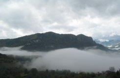 Fog in Lucky, Bulgaria