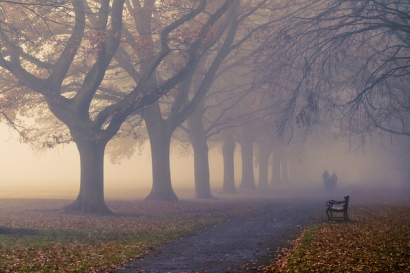 Autumn Fog by Strep72